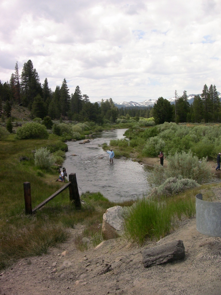 When do you call this a brook, a creek, or a stream?  (or a river for that matter)