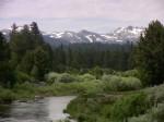 Looking west towards the Sierra Nevada peaks on Highway 88