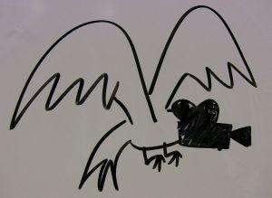 EagleVision